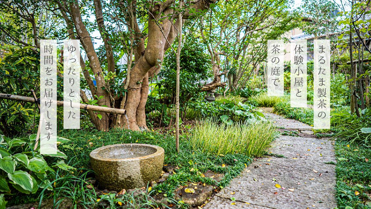 まるたま製茶の茶の庭